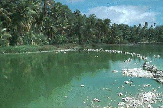 Naurubuada-lagoon-tripadvisor