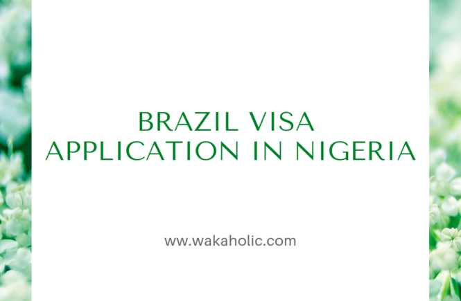 Brazil visa application in Nigeria